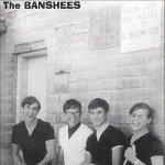 Banshees — Project Blue