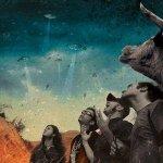 Bull Doza — How To Bake A Song
