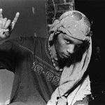 Del Tha Funkee Homosapien — Missing Link (feat. Dinosaur Jr.)