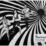 Factree — Kaleidoscope