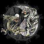 Halion — Psychedelic dream
