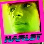 Harley & Rasta Family — Lion in a sheep skin