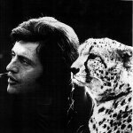 Joe Dassin — Le Moustique