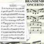 Karel Brazda & Philharmonia Slavonica — Brandenburg Concerto No. 6 In B-Flat Major, BWV I. Allegro