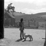 Neil Young & Crazy Horse — Born in Ontario
