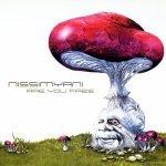 Nissimyani — Coridoors