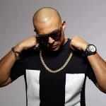 Sean Paul vs. TOO MANY ZOOZ — Get Busy (DJ HIch Edit 106 bpm)