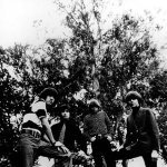 The Standells — All Fall Down