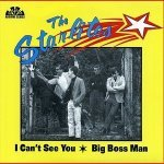 The Starlites — I Can't See You