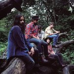 Treetop Flyers — Become a Stranger