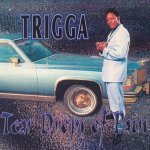 Trigga — Welcome To My City