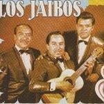 Trio Los Jaibos — Amor de Mis Amores