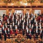 Wiener Symphoniker & Helmuth Froschauer & Werner Hollweg — Auf der Heide blühn die letzten Rosen