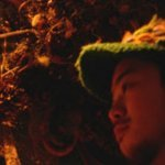 woodblue — Hopeless Love